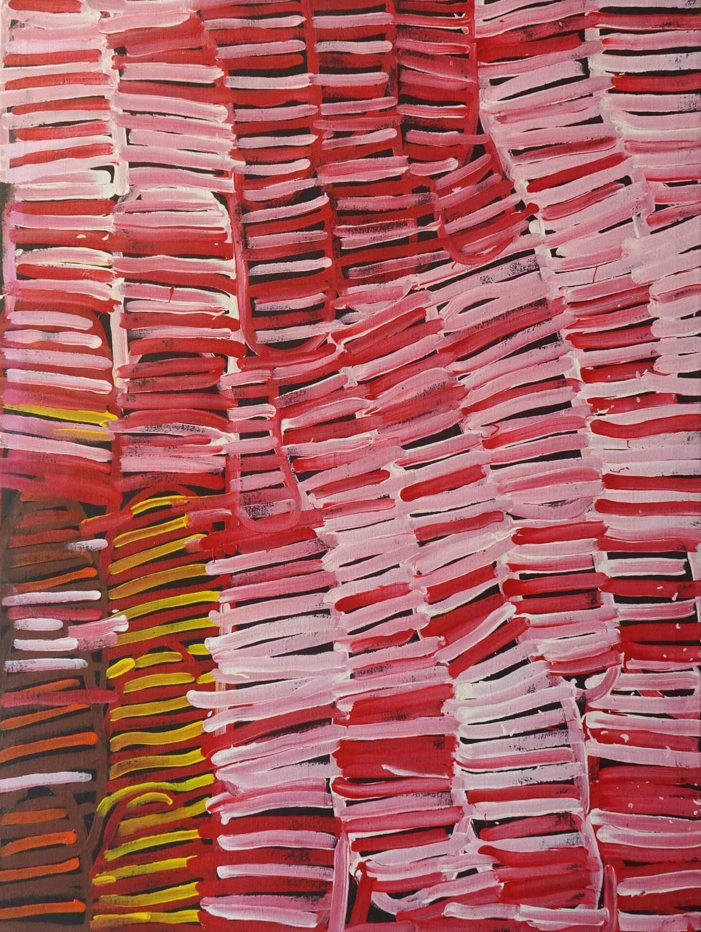 Resultado de imagen de minnie pwerle paintings