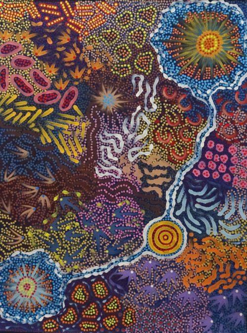 Khatija Possum Aboriginal Art