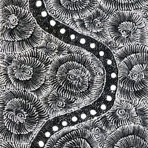 Maria Nampijinpa Brown Aboriginal Art